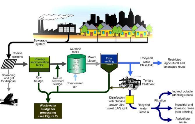 Figure 1: Sewage Treatment Process