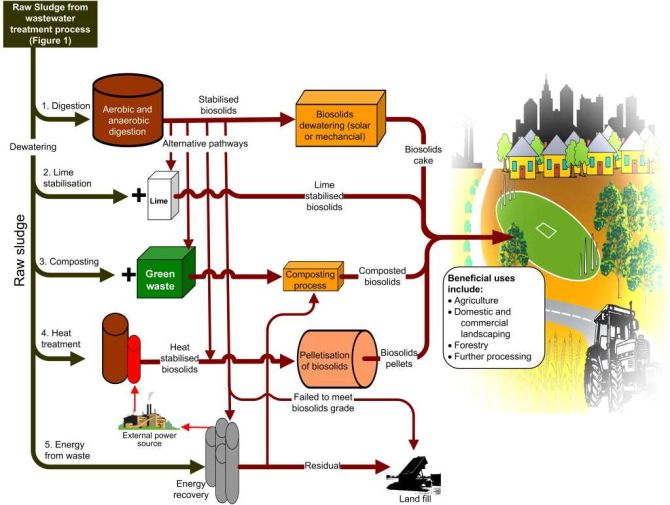 Figure 2: Biosolids Treatment Process
