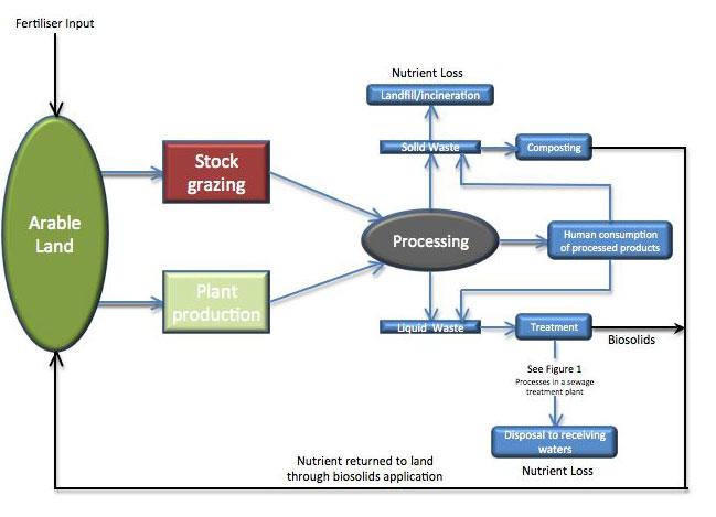 Figure 3: Nutrient Flows